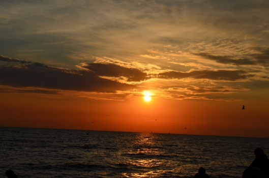 sscs - sunset