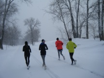 winter run - pisp1