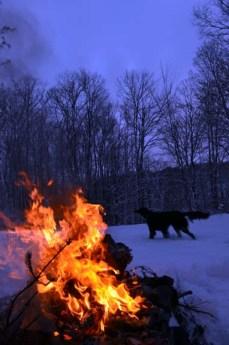 winter fires