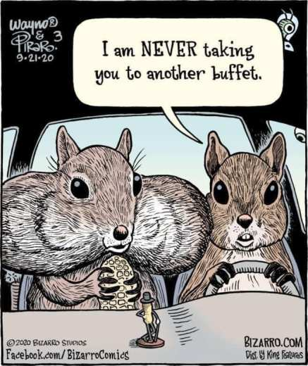 friday funny - nuts