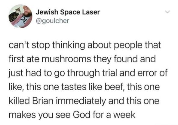 friday funny - shrooms